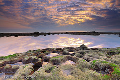 My Winter (A.alFoudry) Tags: winter sea cloud shells seaweed cold reflection green beach rock clouds sunrise canon eos mirror rocks purple mark tide low shell full shore frame 5d kuwait usm fullframe shel canonef2470mmf28lusm ef kuwaiti q8 abdullah mark2 2470mm || f28l kuw q80 q8city xnuzha alfoudry abdullahalfoudry foudryphotocom mark|| 5d|| canoneos5d|| mk|| canoneos5dmark||