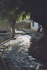 Kagbeni (jf garbez) Tags: voyage street travel nepal people river asia village minolta sigma rivire asie mustang himalaya rue annapurna personnes himalayas gens watercourse nationalgeographic villager npal annapurnas kagbeni 28200mm  habitant coursdeau minoltadynax505si  villageois npalais nepli  sigma2802000mm pashchimanchal