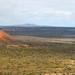 fitz landscape
