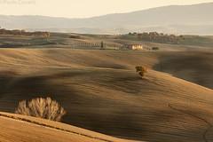 Layers & Lines #7 (Corsaro078) Tags: landscape tuscany siena toscana paesaggio colline cretesenesi d90 greatphotographers sanquirico