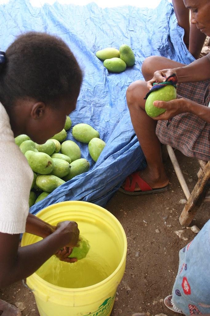 Lavage mangues