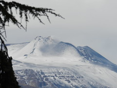 Winter is coming back (etnaboris) Tags: winter italy snow tree home volcano lava sicily etna 2011 trecastagni summitcraters newsoutheastcrater oldsoutheastcrater