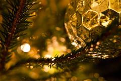 (drfugo) Tags: christmas tree pine silver bokeh depthoffield hexagon needles bauble canon450d sigma28mmf18exdg