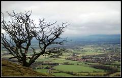 looking towards Worcester (TonyTeeBee) Tags: roman malvern worcestershire romans hillfort britishcamp malvernhills