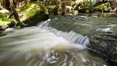 Russell Falls (michaelgreenhill) Tags: longexposure waterfall nationalpark australia waterfalls tasmania russellfalls 2011 mtfield mtfieldnationalpark