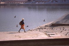 Old Monk Is Walking Walking (neelabh75) Tags: shadow lake reflection walking nikon fuji pigeon kitlens monk slide epson 100 filmcamera asa pushkar provia sadhu f55 v330 flyingpigeon neelabh neelabh75 saffronstairs