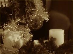 A bizarre late merry Xmas (Feathers in my head) Tags: christmas xmas winter blackandwhite bw sepia bn inverno natale biancoenero seppia fujifilmfinepixs1600