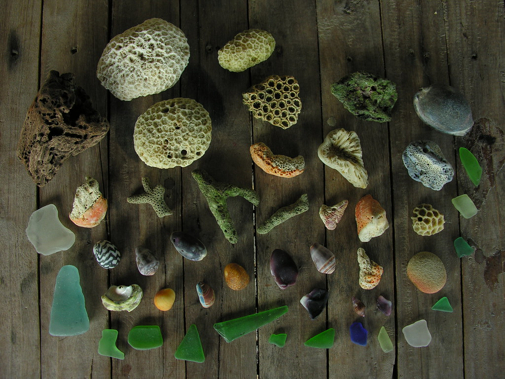 A collection, Ko Bulon Lae, Satun, Thailand