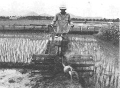A Continuous Rice Pro_p4a (IRRI Images) Tags: farmer winnowing handtractor