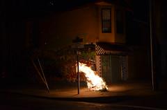 San Francisco 025 (Michael Kappel) Tags: sanfrancisco california ca fire graffiti san francisco flames arson firing pyromania treeonfire sanfranciscograffiti burningtree torching incendiarism settingfire burningchristmastree christmastreeonfire