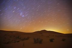 Startrails (TARIQ-M) Tags: longexposure tree texture stars landscape star sand waves desert dunes riyadh saudiarabia  startrails   canoneos5d            ef1635mmf28liiusm canoneos5dmarkii