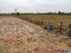 Irrigation piping (Asia Plantation Capital) Tags: thailand north na east ban jaa nakon sakon