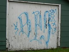 BROWN PRIDE SURENOS 13 (northwestgangs) Tags: graffiti bellingham gangs crips piru surenos texasstreet