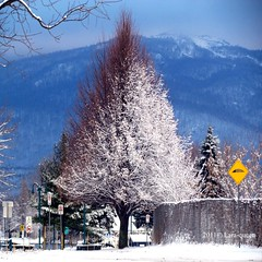 . (Lara-queen) Tags: winter snow canada nature montagne square december quebec magog hiver mount neige orford decembre 2011 500x500 carrr quynhvu laraqueen rememberthatmomentlevel1