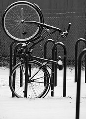 Winter Bike (Steffe) Tags: winter bw bike canon sweden tungelsta haninge bikerack pendeltgsstation ginordicjan12 wwwbiltemase