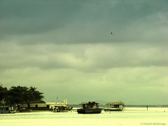 Learning to sail / Aprendiendo a navegar (Claudio.Ar) Tags: sea color nature brasil boats mar topf50 ship sony soe dsc guaruja h9 dockbay claudioar claudiomufarrege bestcapturesaoi magicunicornverybest