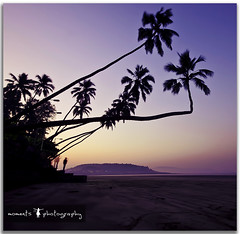 early morning hues.. (PNike (Prashanth Naik)) Tags: sea sky india beach water colors sunrise coast nikon asia long exposure purple coconut postcard roadtrip hills hues maharashtra murud konkan d7000 pnike