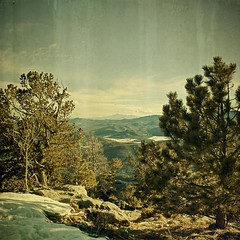 what 5 miles will get you (jssteak) Tags: trees winter sky snow forest canon vintage square colorado rocks summit aged peaks ridgeline pikespeak textured lateafternoon bristleconepine bergenpeak texturesquared t1i