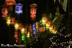 Lunar New Year Lanterns (David L. Nguyen) Tags: temple vietnamese chinese chinesenewyear newyear lantern lunarnewyear happynewyear vietnamesenewyear kungheifatchoi chineselantern chucmungnammoi vietnameselantern diatangtemple kungheifatchoinewyear