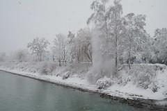 La chute (Lucien30) Tags: schnee winter snow lumix day hiver panasonic neige innsbruck dmcg3 pwwinter