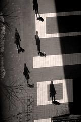Our evil twins (briyen) Tags: street shadow bw flickr group surreal challenge flickrchallengewinner thepinnaclehof kanchenjungachallengewinner tphofweek185