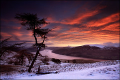 Loch Tay Dawn (angus clyne) Tags: life camera uk light red sky cloud sun mountain lake snow cold tree art wet water face field set pine night photoshop canon river landscape dead flow photography death dawn scotland high stream europe long exposure frost day walk farm hill north perthshire dream picture scottish hike fresh tay croft hedge lone loch rise larch learn slope tutorial scots lessons