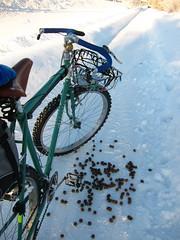 Moose Exhaust in the Bike Lane (Kevin Turinsky) Tags: winter moustache atlantis anchorage rivendell nitto snowcat moosepoop shimano3n72