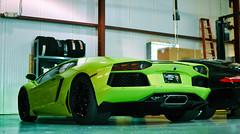 Aventador VI (Winning Automotive Photography) Tags: