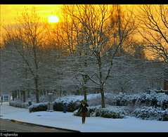 Good Morning (raghavvidya) Tags: park uk morning england sun snow good front business explore page peterborough lynchwood raghavvidya