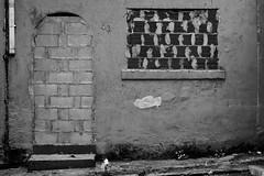Can't live here anymore.  Even the little rat died trying. (marcelo_valente) Tags: street door houses brazil house abandoned broken window monochrome architecture dead rat ruins decay ruin fujifilm locked prohibited banned abandonada arquiteta blackaandwhite xphotographer xe2 sealedup myfujifilm fujixe2 fujifilmxe2