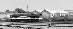 66847-Eastleigh 05/05/2016 (Woolwinder) Tags: england hampshire eastleigh ukclass66 colasrailfreight 66847