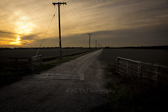 Vanishing Point 2 (C & R Driver-Burgess) Tags: road sunset field clouds dark gate track open dusk path empty horizon overcast driveway dim paddock ploughed powerpoles cattlestop