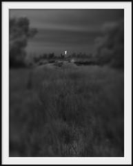 light tower (Andrew C Wallace) Tags: city blackandwhite bw reflection lensbaby skyscraper ir gold australia olympus victoria infrared grasslands tiltshift m43 campbellfield nikon50mmf14 microfourthirds urekatower tilttransformer olympusomdem5