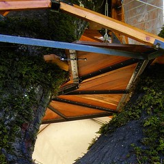 Treehouse #design presents a challenging problem... (dustinfeider) Tags: tree green nature architecture design wooden structure treehouse underside form tinyhome aesthetics woodflooring cottagelife greenliving beautifulfloor glamping treesleeping tinyhomes liveoutdoors lifeofadventure earthcinema uploaded:by=flickstagram ourdailyplanet instagram:venuename=healdsburg2ccalifornia instagram:venue=214009114 instagram:photo=12455411353655510771598741643 earthmedia
