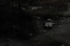 (fenia_ps) Tags: white black abandoned factory grunge away greece teddybear thrown