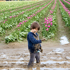Playing in the mud 3 (Getting Better Shots) Tags: flowers flora mud skagit tulipfestival