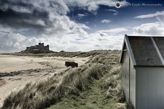 Castle Bamburgh, Northumberland (Silent Eagle  Photography) Tags: blue sky plants castle beach weather clouds canon photography yahoo google silent eagle outdoor playa northumberland sep northeast bamburgh bamburghcastle canoneos5dmarkiii silenteaglephotography silenteagle09