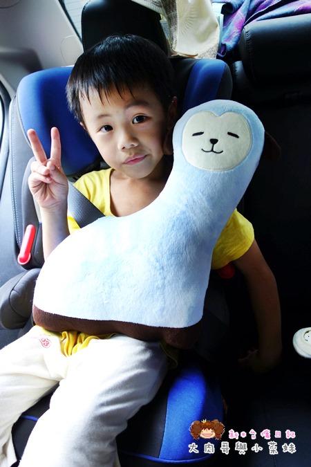 KIDU-奇荳 安全抱抱枕 (11).JPG