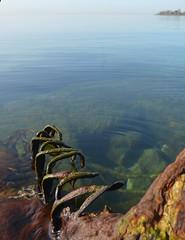claws of Lake Ontario (mcfcrandall) Tags: old toronto water metal still rust rocks lakeontario