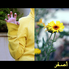لغة الاشارة..sign language #7 ( غ ــآلـيـۃ) Tags: