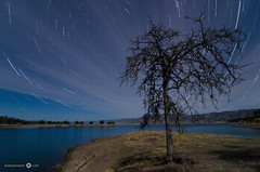 Cloudy Star Trails at Lake Berryessa - [EXPLORED] (andreaskoeberl) Tags: california longexposure shadow sky lake motion reflection tree water night clouds dark circle dead star lowlight nikon stitch trails wideangle shore napa startrails blending berryessa d7000 tamron1116f28 nikond7000 andreaskoeberl