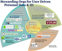 An Org Chart covering who is Stewarding User-D...