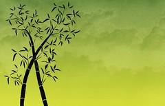 Free Bamboo Stock BackgroundsEtc Wallpaper -  Spring Bud Green (webtreats) Tags: green spring bamboo bud wallpapers tileable webbackground stockgraphics backgroundsetc mysitemywaycom
