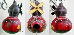 casinha vermelha (BILUCA ATELIER) Tags: gourds bees ladybugs cabaas pinturacountry porongos homebirds biluca casinhasdepassarinho