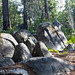 Rocks at Mariposa Grove