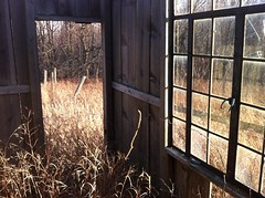 What a view (farlane) Tags: abandoned field michigan benzie
