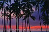 Palms at Sunset - Hawaii (~ Floydian ~ ) Tags: ocean park trees sunset usa cloud sun color tree tourism water colors clouds america canon palms landscape island lights hawaii big warm long exposure view state pacific dusk postcard smooth romance palm palmtrees national palmtree postcards historical states bigisland 50 viewpoint meijer henk puuhonua honaunau warmcolours hawaii50 floydian proframe proframephotography canoneos1dsmarkiii henkmeijer