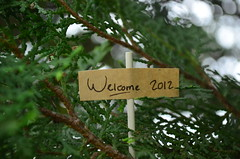 Welcome 2012! (qefy) Tags: tahun 2012 pagar hijau happynewyear