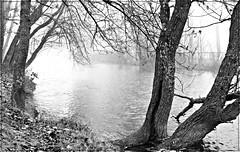 (elementoneutro) Tags: blanco rio canon eos agua negro bn burgos barrio element arlanzon capiscol elementoneutro davidgonzalezarnaiz 21dic11
