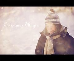 Christmas magic (Stuart Stevenson) Tags: uk photography scotland christmaseve merrychristmas hss clydevalley thanksforviewing magicaltime canon5dmkii stuartstevenson stuartstevenson